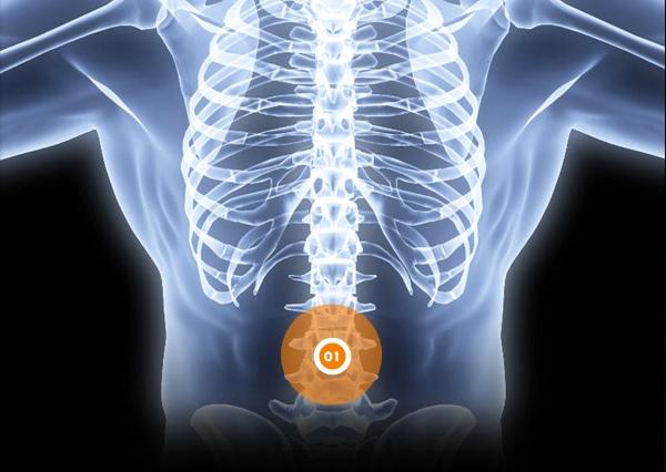 Douleurs au dos - Rive Sud - OrthoAction